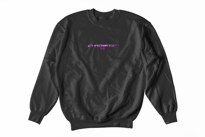 DRAKE MATRIX Champion Sweatshirt