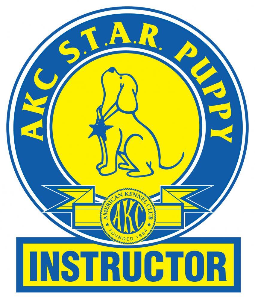 StarINSTRUCTORLogo-FINAL
