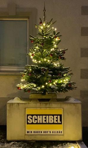 Weihnachtsbau.jpg