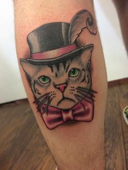 Cool Cat Portrait