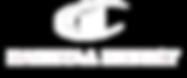 logo0000 — копия.png