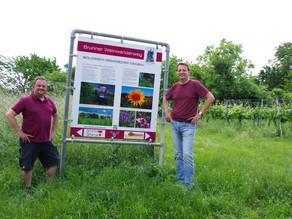 Bio-Tafel für den Weinwanderweg