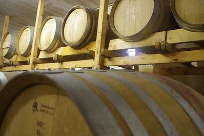 Unsere Rotweine reifen in Barrique Fässern.