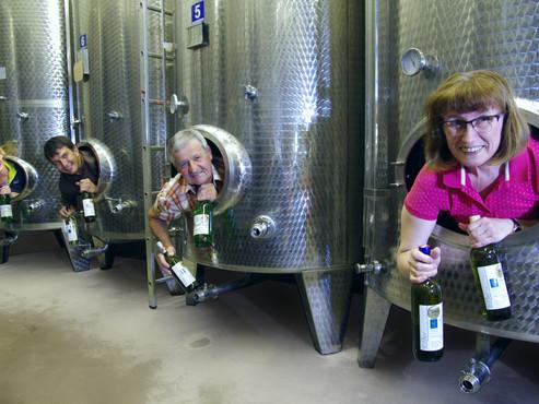 Achtmal Gold für Sulzer-Weine