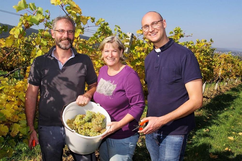 Pfarrer Adolf Valenta unterstützt Martin und Karin Niegl bei der Weinlese