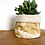 Thumbnail: Manifest Yellow Plant Pot Cover