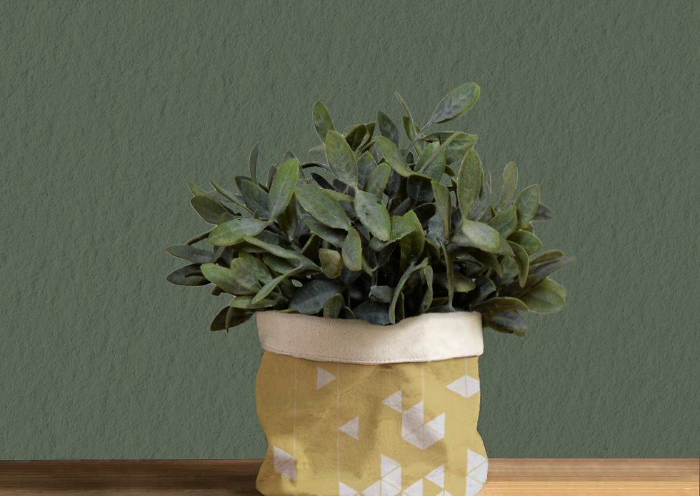Manifest Yellow Plant Pot Cover