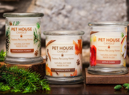 Odor neutralizer candles : a christmas gift idea for pet lovers