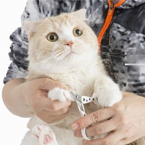 Necoichi has the Purrrfect nail trimmer for cats !!