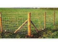 temp fencing 2.jpg
