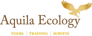 Aquila_Final_Logo.png