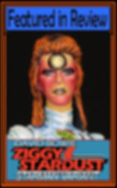 Profile Pic 16 David Bowie Starman Varia