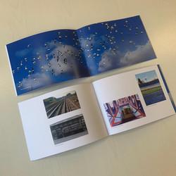 Yam Cams book centre page spread