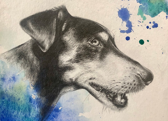 Personalized pet drawings