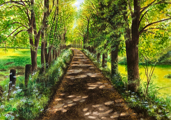 Trust The Journey: Walks at St Patrick's College Maynooth