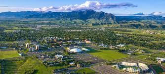 college montana state