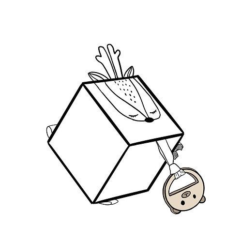 Cube d'éveil Bestiole personnalisé avec le prénom et infos naissance