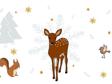 Grand jeu de Noël 🎅🏼
