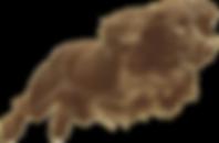 WynJump-cutout.png