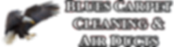 Carpet Cleaner Colorado Springs