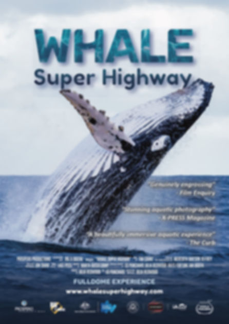 Whale Super Highway