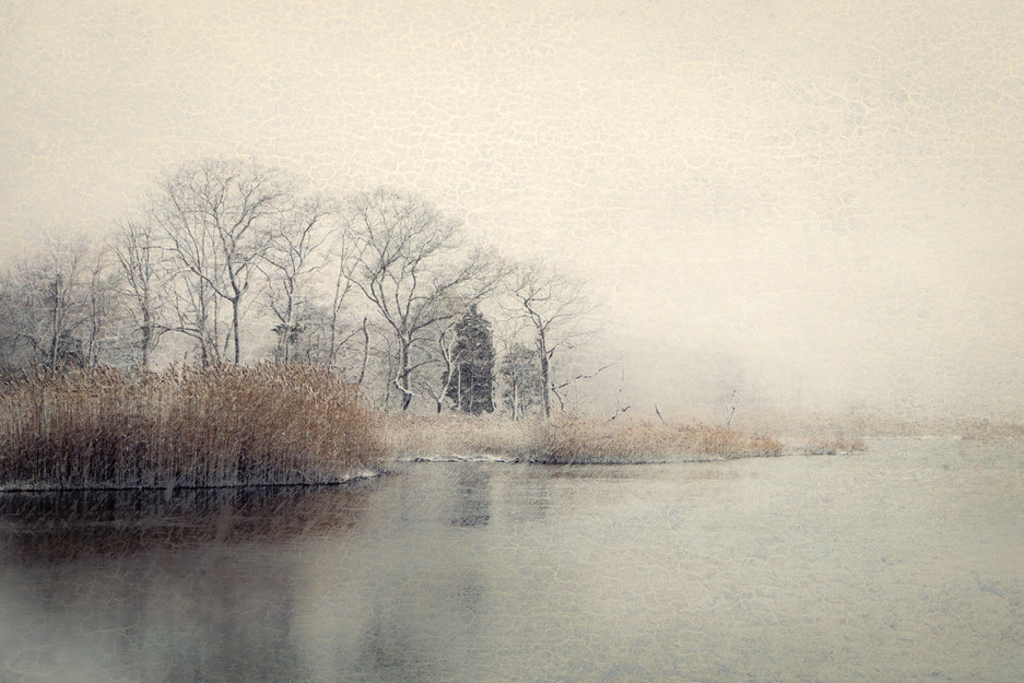 Sunken Meadow Creek Winter