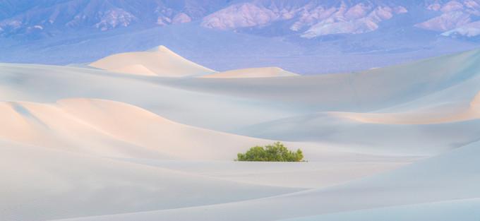 Pastel Dunes, #5