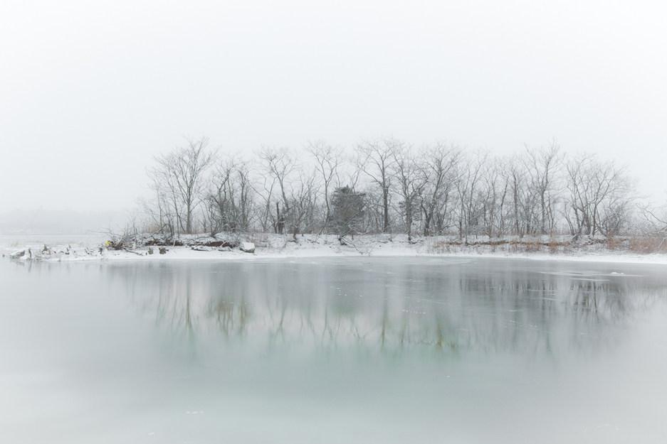 Along Shoreline Trail in Winter #2