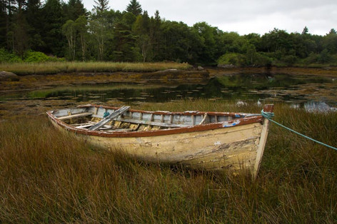 Row Boat in Spartina