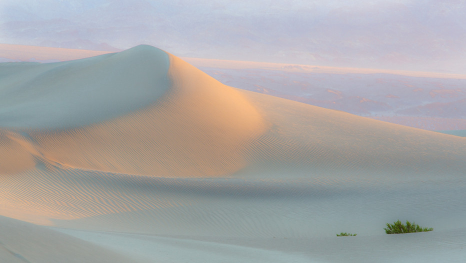 Pastel Dunes #1