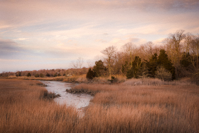 Late Fall Mattituck