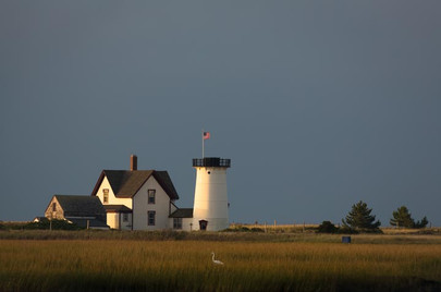 Lighthouse with Heron