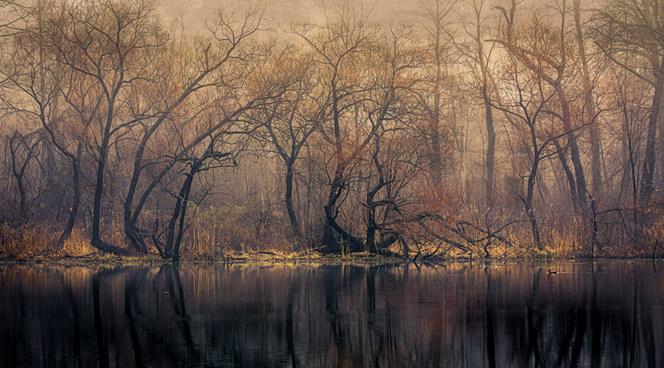 Scudders Pond