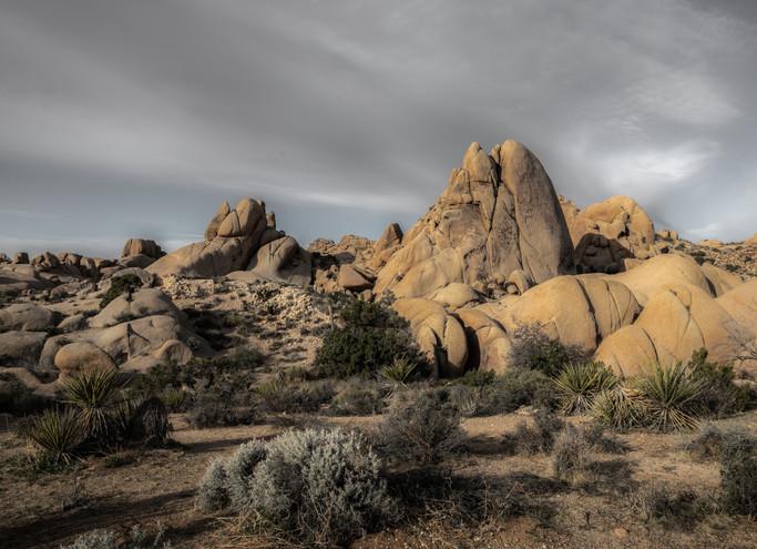 Large Boulders Joshua Tree NP