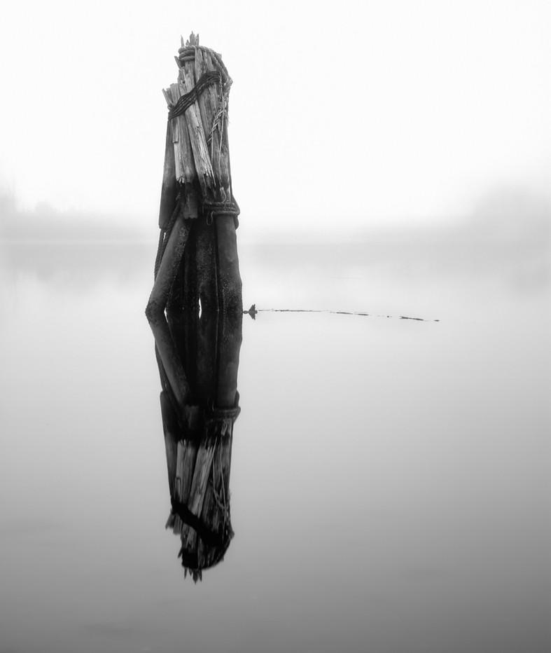Piling in Fog