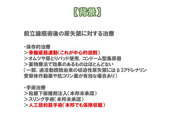 ホムペ用説明004.png