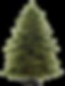 Árbol de Pino Navideño