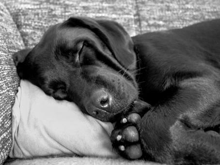 Comfort is not optional!