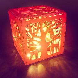 Midnight Animals Light Box
