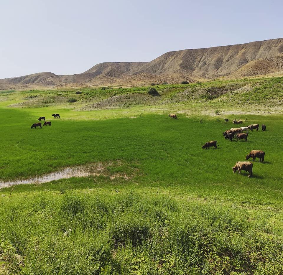 Gegham Armenia hiking trekking Camp Cauc