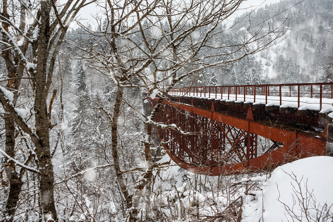 borjomi bakuriani cuckoo train bridge ei