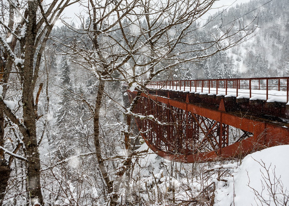 borjomi bakuriani cuckoo train bridge ei