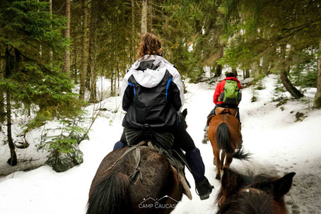borjomi horseriding tour georgia winter