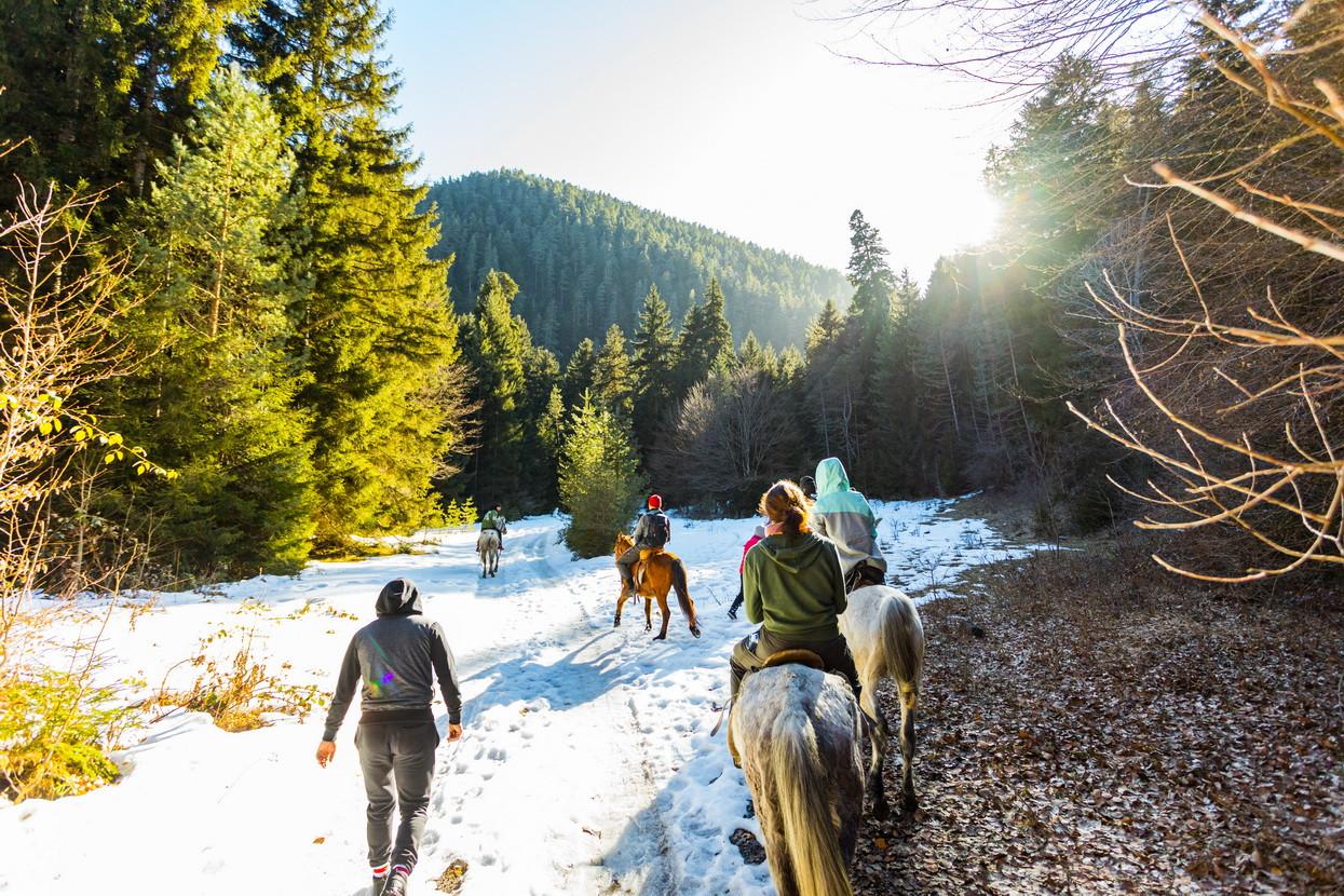 borjomi horseriding tour georgia winter camp caucasus