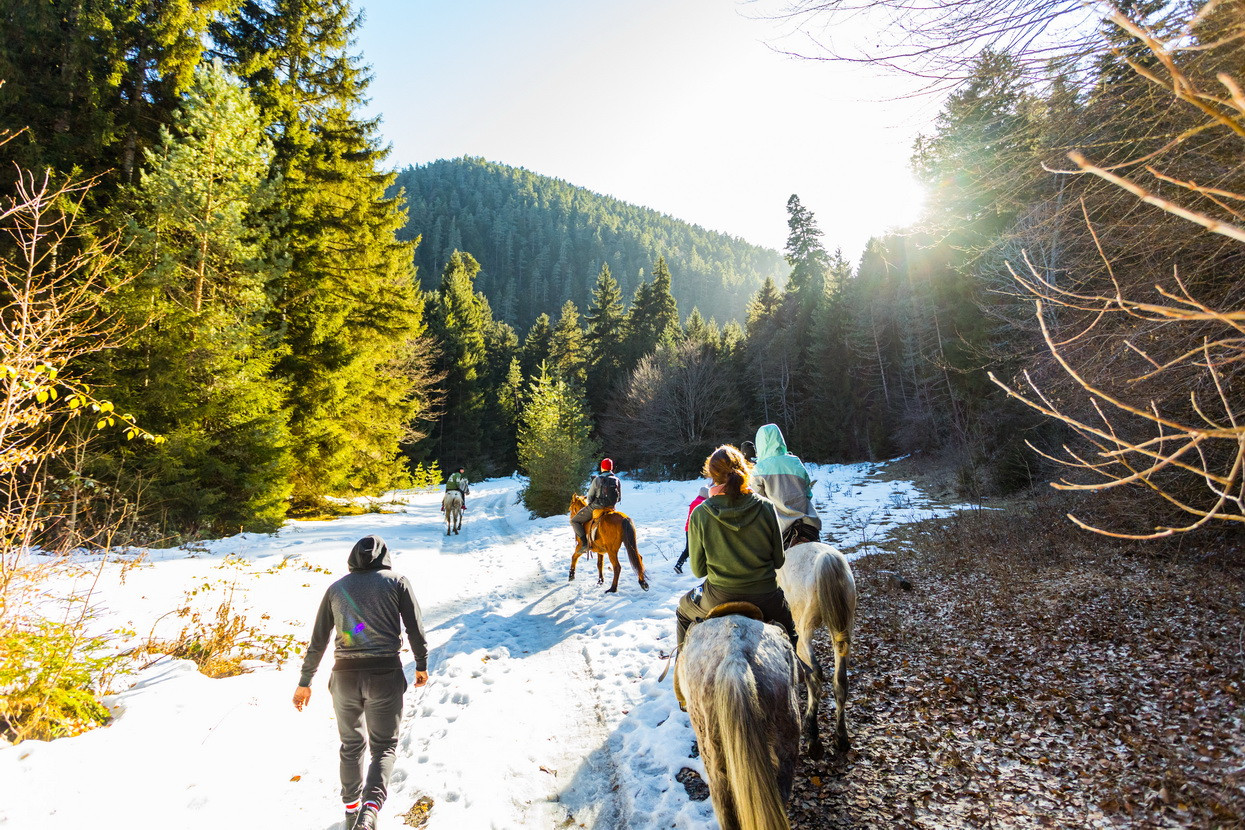 borjomi horseriding tour georgia winter camp caucasus