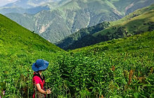 Hiking tour Lagodekhi national park Georgia Camp Caucasus.jpg