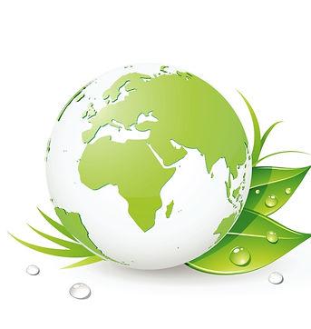 Make It Rain Power Washing & Paver Sealing 38.jpg