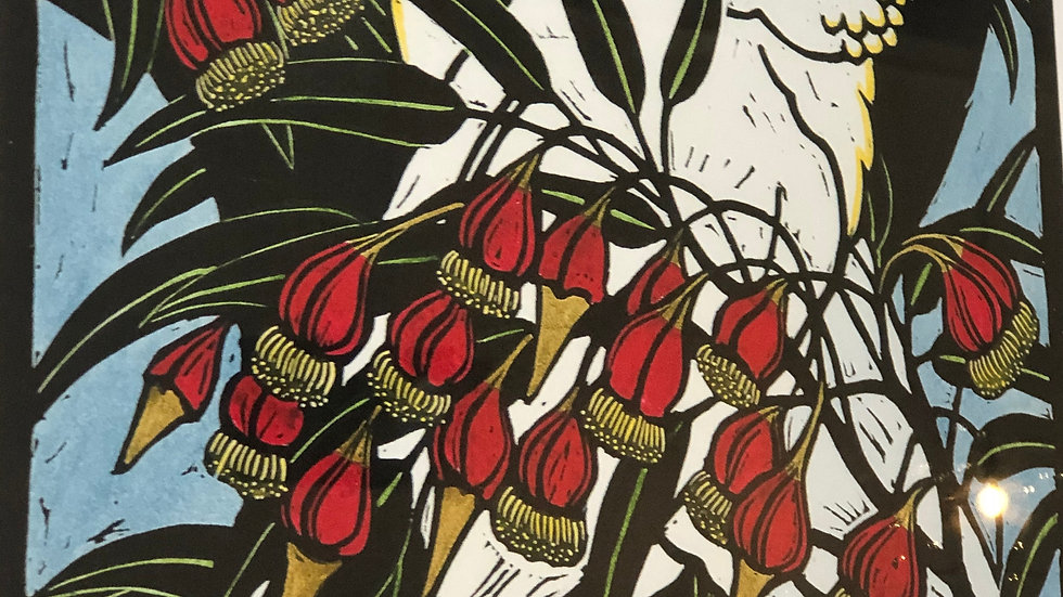 Sulphur Crested Cockatoos and Firewheel Tree - LESLIE VAN DER SLUYS