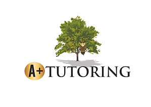 A+ Tutoring logo final-01.jpg