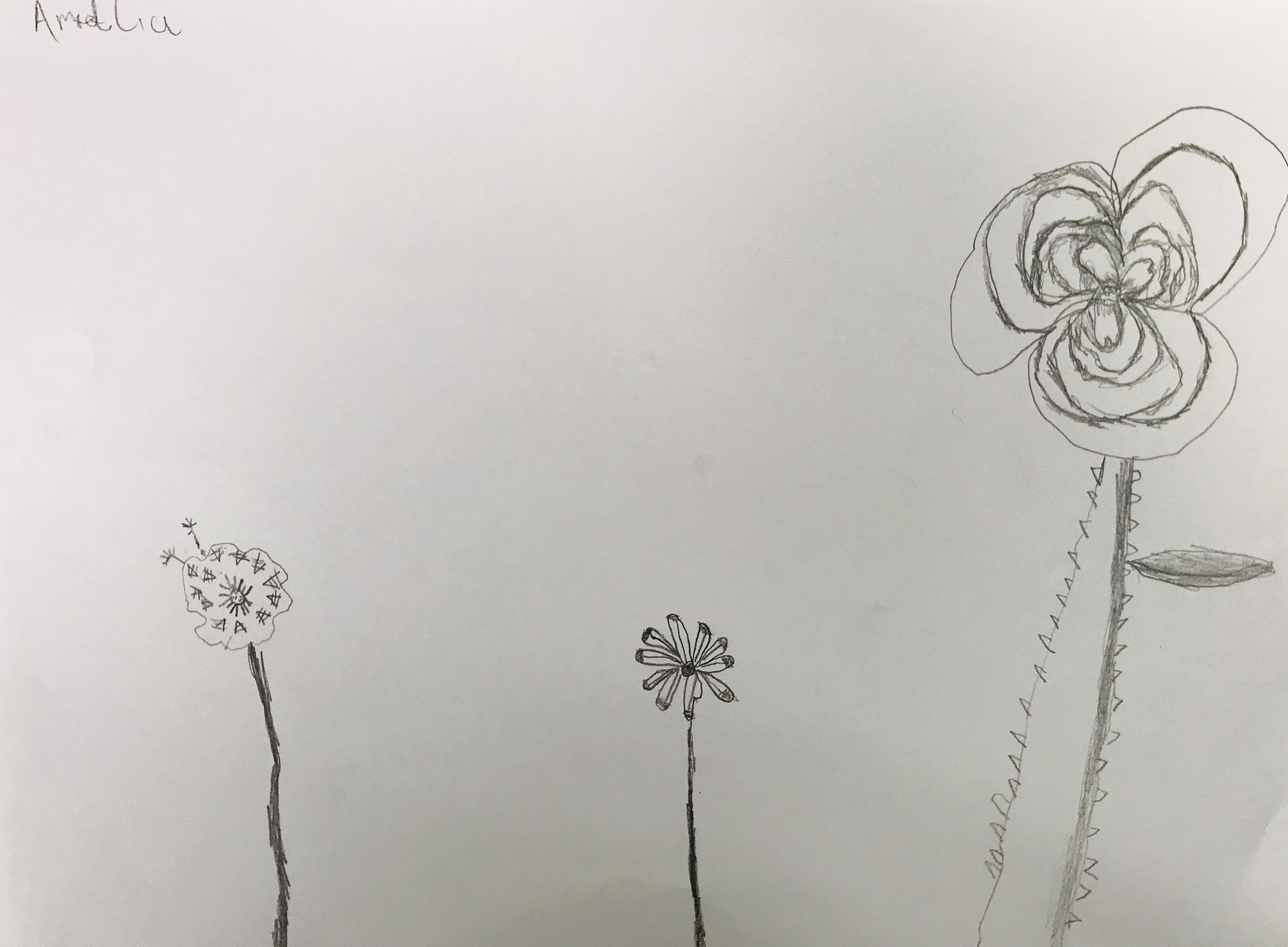 FlowersAmidlia.jpeg